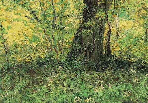 Vincent van Gogh: The Paintings (Undergrowth)
